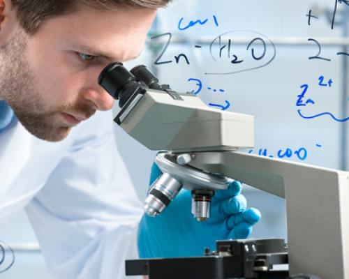 Лайфхак: учитель биологии, где учиться, какие навыки нужны?