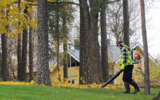 Лайфхак: что делает садовник — обязанности и зарплата