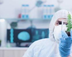 Лайфхак: чем занимаются биотехнологи, сколько зарабатывают, обязанности