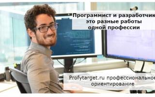 Работа: программист и разработчик — особенности, отличия